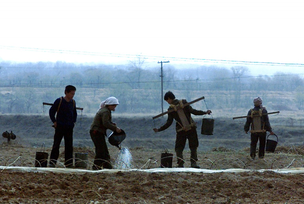 NORTH KOREAN FARMERS IRRIGATE A FIELD ON THE OUTSKIRTS OF KAESONG CITY.